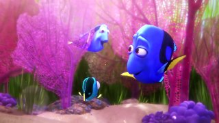 Finding Dory Little Dory Babyg