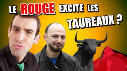 IDÉE REÇUE #21 : Le rouge excite les taureaux (feat. Schoumsky)