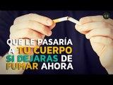 Qué le pasa a tu cuerpo si dejas de fumar ahora mismo