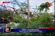 Piura: dos muertos dejó caída de árboles por fuertes lluvias