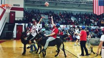 Basket keledai mendapat cemooh atas kekejaman terhadap binatang - Tomonews