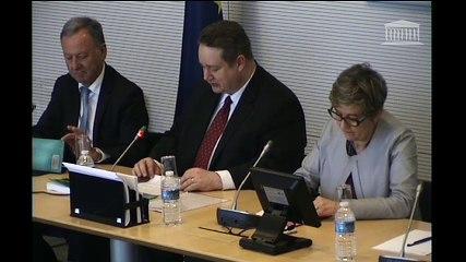 Affaires européennes présentation du rapport sur les suites du référendum britannique et le suivi des négociations