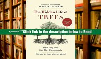 Read The Hidden Life of Trees: What They Feel, How They Communicate-Discoveries from a Secret