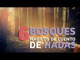 6 Bosques MÁGICOS de cuentos de hadas