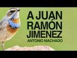 A Juan Ramón Jimenez  - Antonio Machado