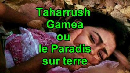 Taharrush Gamea ou le paradis sur terre