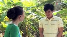 Tết Tết Tết – Tập 20 - Phim Tình Cảm Việt Nam Đặc Sắc Hay Nhất 2017