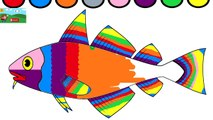 Learn Colors For Kids And Color This Fish Coloring Page Video