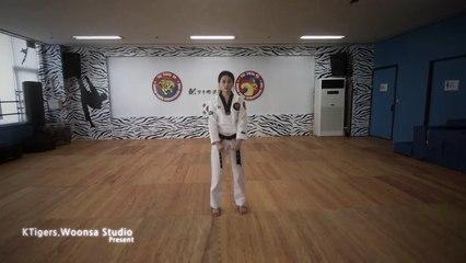 [태미]태권도 품새 - 실전 응용 액션