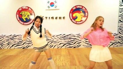 Red Velvet 레드벨벳_Dumb Dumb K-Tigers cover