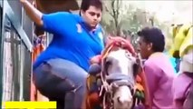 whatsapp funny videos 2017 try not to grin or laugh funny indian hindi videos