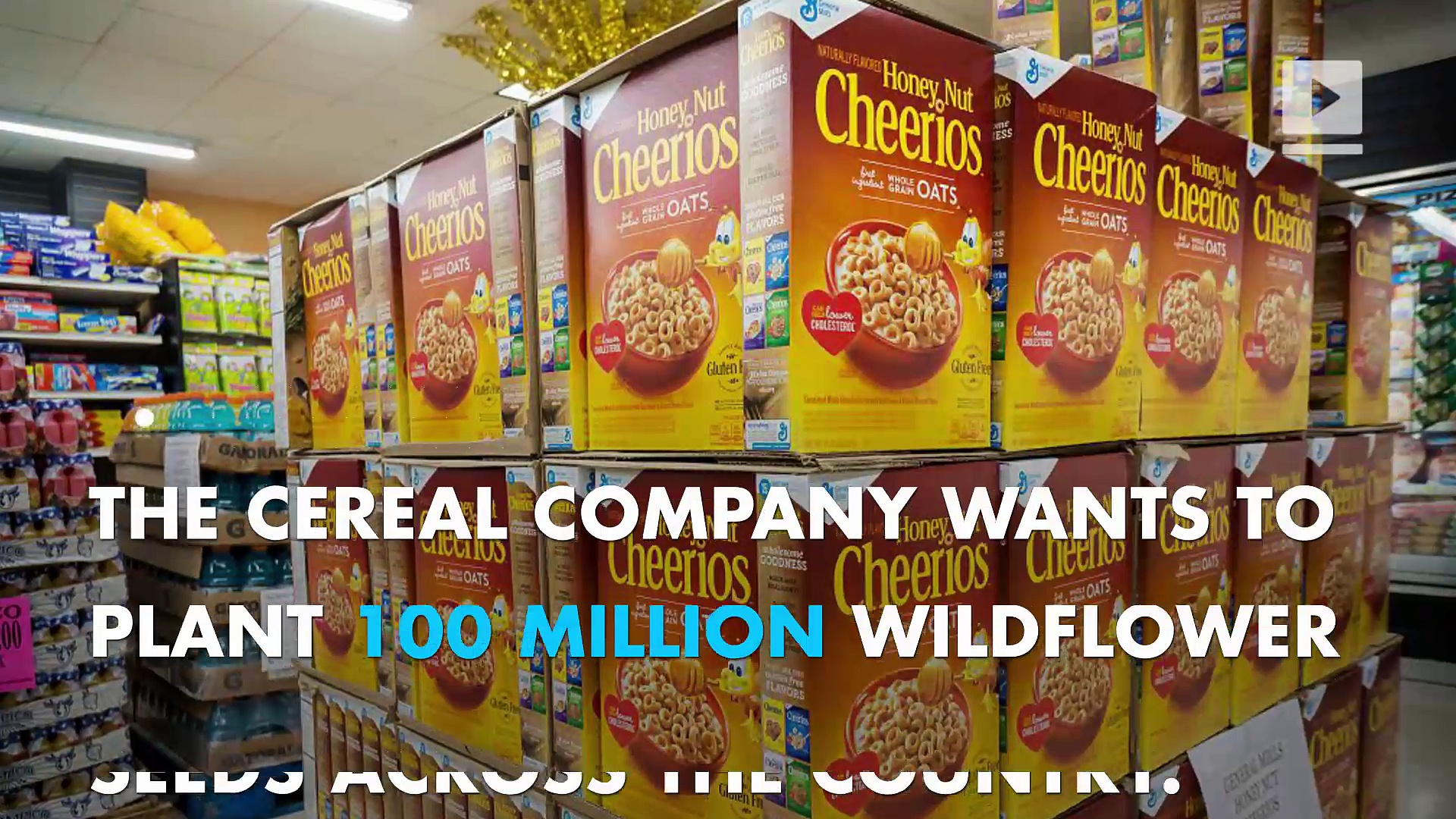 Cheerios wants you to help to save the bees!