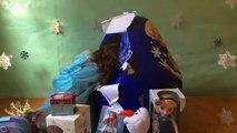 Disney Frozen Elsa Anna Toys SURPRISE Christmas ORNAMENTS MyLittlePony PlayDoh S