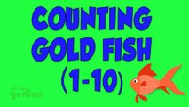 GoldFish Report No. 69 with Kent Dunn: 36 hours and Counting- What you need to Know