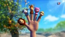 famille doigt abeille | doigt chanson famille | chanson bébé | Bee Finger Family | Kids Rh