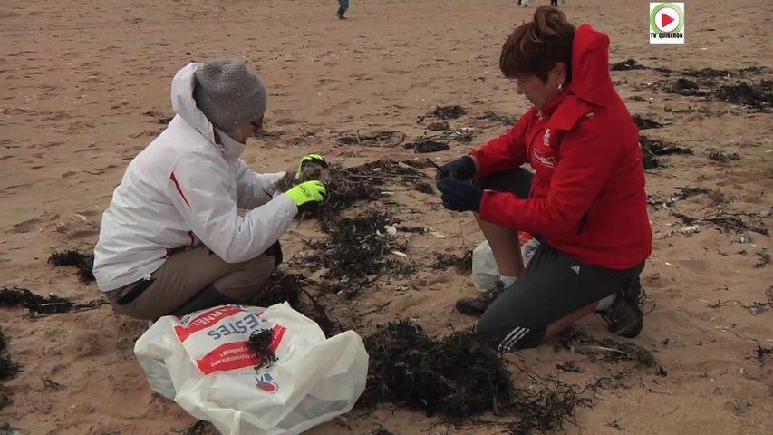 Plouharnel: Nettoyage plage Ste Barbe - TV Quiberon 24/7