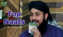 Hafiz Ghulam Mustafa Qadri, New Naats In Urdu Best Islamic Pakistani Mehfi By Faroogh E Naat