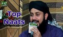 Hafiz Ghulam Mustafa Qadri, New Naats In Urdu Best Islamic Pakistani Mehfi By Faroogh E Naat