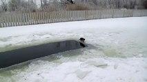 Diese im Eis-fischende Katze bemerkt etwas, das sich im Wasser bewegt, aber dann..BAM, schau dir einfach diese Katze an!