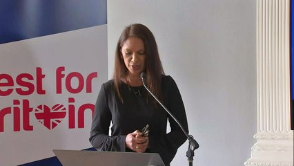 Gina Miller raises £300,000 for pro-EU election candidates