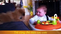 adorables perros jugando con bebes parte 2