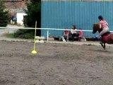 Fete du cheval PG slalom (3)