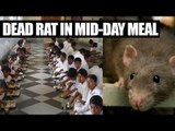 Delhi school students served mid day meal with dead rat, 9 fall sick | Oneindia News