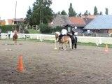 Fete du cheval PG corde (1)