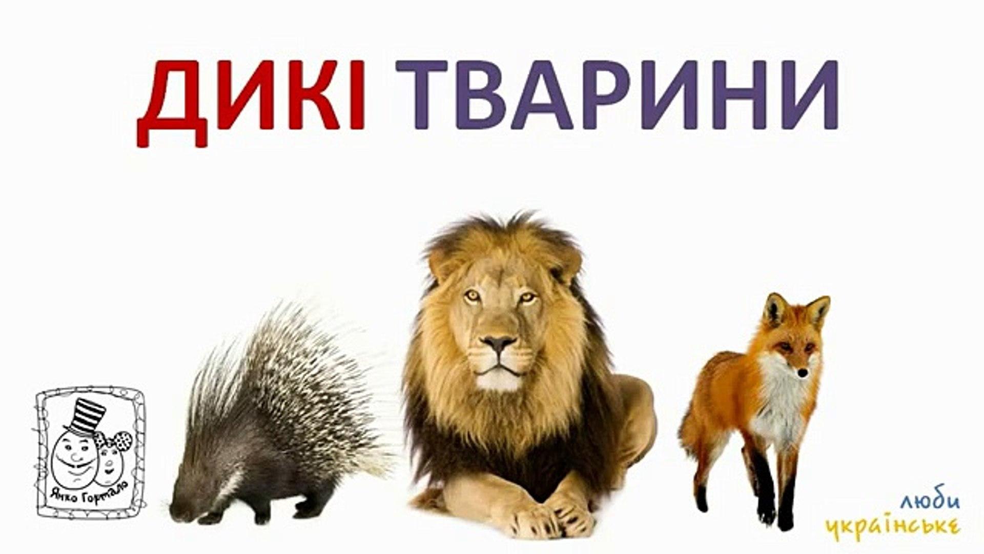 ДЛЯ ФУРШЕТА мультфильмы детей Украинский дикие и домашние животные изучаем цвета овощи и фр