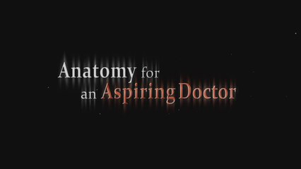 Youth Serving with Passion - An Anatomy for an Aspiring Doctor, 2014 Gold Panda Awards best cinematography nominated