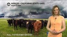 Violents orages et grêlons géants en Californie