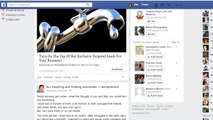 Facebook Newsfeed Update - HowLike in Your Newsfeed