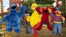 Finger Family Song SESAME STREET CARS Cookie Monster Big Bird Elmo Ernie Cookie Tv Video
