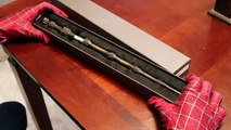 Spiderman and Harry Potters Wand! - In Real Life! | Superhero Movie |