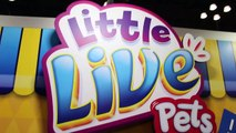 Little Live Pets TOY FAIR 2016 Tweet Talking Bird, Lil Frog, Turtle, Mouse, Snuggles Puppy-a