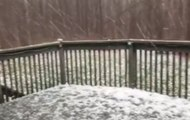 Heavy Hail Blankets Backyard in Cleveland, Tennessee