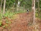 thE mOucH974 - Paradize Trail : Tévelave