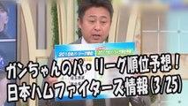 ガンちゃん 2017年パ・リーグ順位予想!2017.3.25 日本ハムファイターズ情報 プロ野球
