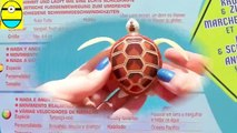Toys review toys unboxing. Robo turtle. Turtle rh unboxing toys egg surprise tv ch