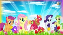 Finger Family MLP | Daddy Finger Daddy Finger | My Little Pony Cartoon Nursery Rhymes