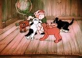 Top Desenhos raros 1299G, desenhos em português, desenhos animados, desenhos dublados, Melhores desenhos Popeye e Olivia