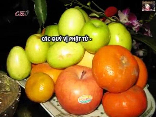 Tân Hồng Thái Kỷ Niệm - Ngày Húy Kỵ Nhị Vị Cô Tổ Trần Môn 2008