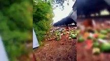 Popular Videos - Gallagher & Watermelon