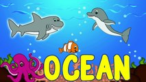 Sea Animals for Kids   Sea Animals Videos for Children Part 1   Learn to Spell Sea Animals