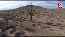 Le Sonoran Desert : cactus, construction et villas de luxe