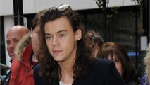 What Does Harry Styles Have Planned For His Solo Career?