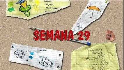 MÉTODO DOMAN: CÓMO ENSEÑAR A LEER A SU BEBÉ. HOW TO TEACH YOUR BABY TO READ. SEMANA 29. PRIMER AÑO.