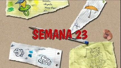 MÉTODO DOMAN: CÓMO ENSEÑAR A LEER A SU BEBÉ. HOW TO TEACH YOUR BABY TO READ. SEMANA 23. PRIMER AÑO.