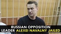 Russian opposition leader Alexei Navalny jailed after protests