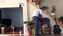 Fiquei FURIOSO quando este homem cruel começou a judiar do gato, mas continue assistindo até o fim…é IMPAGÁVEL!!